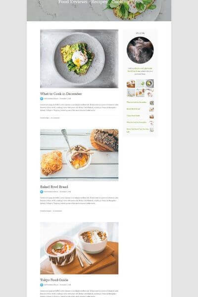 suki theme wordpress